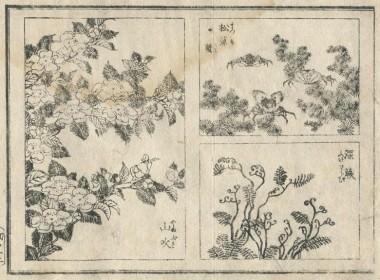 北斎圓式22(hokusaienshiki22)