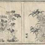北斎圓式24(hokusaienshiki24)