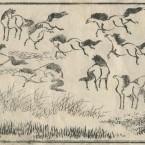 北斎圓式7(hokusaienshiki7)