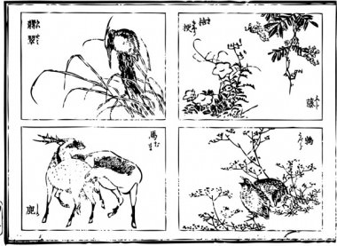 """""""Jade"""", a """"Chinese bellflower"""", """"Japanese wisteria"""", a """"horse"""", a """"deer"""", and """"nightingale"""" are drawn."""