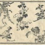 花鳥圓式10(kachouenshiki 10)