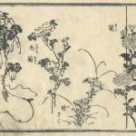 花鳥圓式11(kachouenshiki 11)