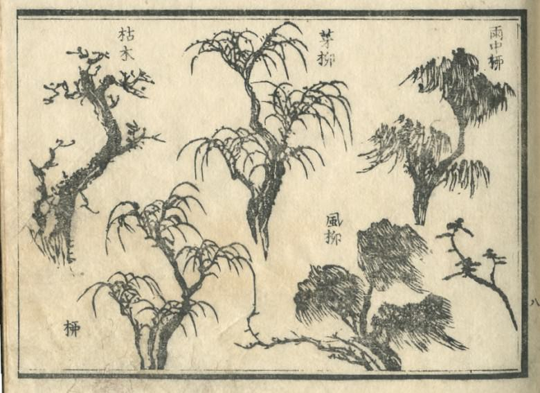 Some appearance of the willow is drawn.