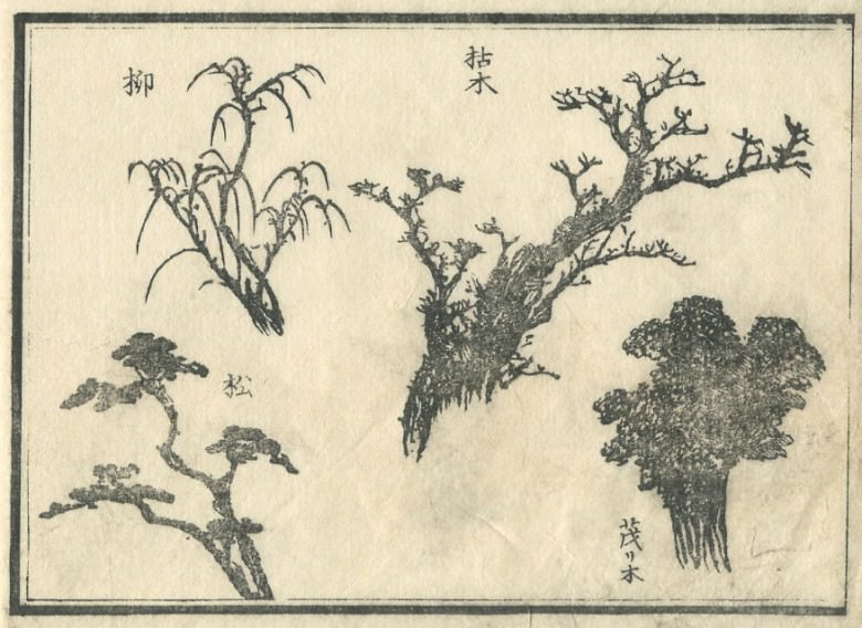 The pine and willow which covered with the pine and withered with the tree which grows thick are arranged.