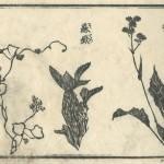 花鳥圓式17(kachouenshiki 17)
