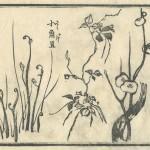 花鳥圓式18(kachouenshiki 18)