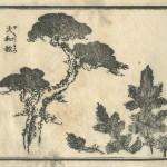花鳥圓式19(kachouenshiki 19)