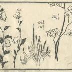 花鳥圓式27(kachouenshiki 27)