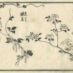 花鳥圓式32(kachouenshiki 32)