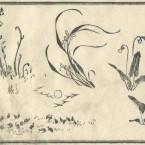 花鳥圓式33(kachouenshiki 33)