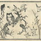 花鳥圓式36(kachouenshiki 36)