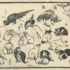 花鳥圓式37(kachouenshiki 37)