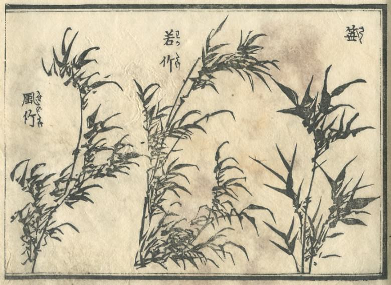 The leaf of the bamboo which blows in Wakatake or a wind, or bamboo grass