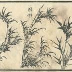 花鳥圓式3(kachouenshiki 3)