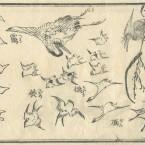 花鳥圓式40(kachouenshiki 40)