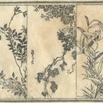 花鳥圓式49(kachouenshiki 49)