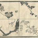 花鳥圓式53(kachouenshiki 53)