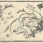 花鳥圓式7(kachouenshiki 7