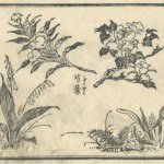 花鳥圓式9(kachouenshiki 9)
