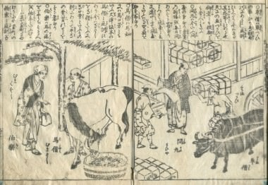 kashiragakizouhokinmouzui-4-person-23