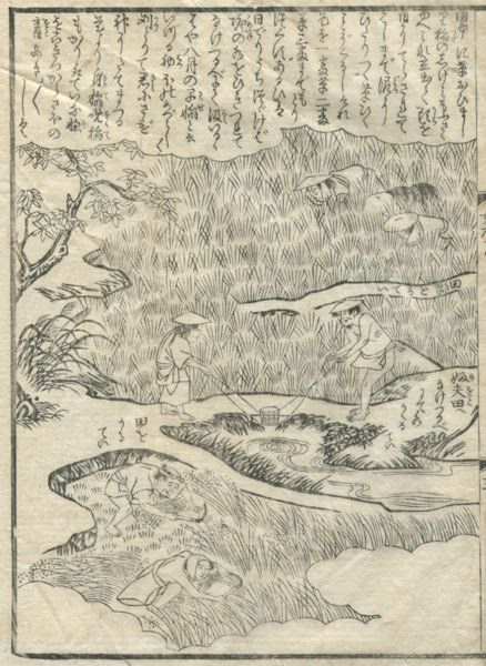 Scenery of the agriculture of the Edo period that the figure of the farmer who works by a rice field was drawn.